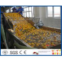 Wholesale Energy Saving Orange Processing Line with Glass / PET Bottle Filling Machine from china suppliers