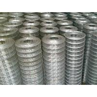 Wholesale 1x1 Galvanized Welded Wire Fence Panels With Square Hole For Breeding Industry from china suppliers