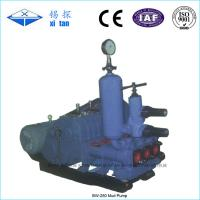 China Mud Pump For Drilling Rigs BW - 250 on sale
