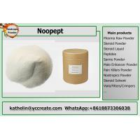 Wholesale White Crystalline Nootropic Powder Pharmaceutical Grade Supplements CAS157115-85-0 from china suppliers