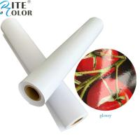 China Primed 24'' 36'' glossy / luster RC inkjet roll photo paper for pigment ink printing on sale