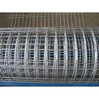 """Wholesale Stainless Steel Welded Wire Mesh for foodstuffs basket, 5"""", 4"""", 3"""" Aperture from china suppliers"""
