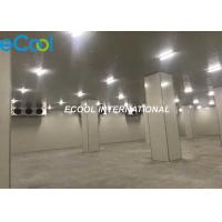 Wholesale Electriccal Control Frozen Food Storage Warehouses For Logistics And Transfer Center from china suppliers