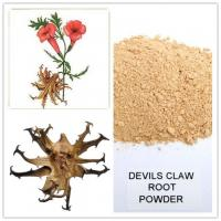 Wholesale devil's claw root p.e,Nutritional supplement devil's claw extract powder from china suppliers