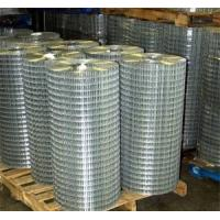 Hot Sale !! Welded Wire Mesh with Best Price