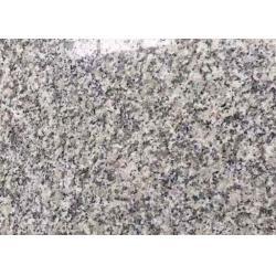 China Light Grey Granite Stone Floor Tiles G602 padang Slab Tile stair 60 X 60 X 2cm for sale