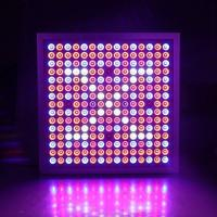 Buy cheap Led Indoor Garden Lights For Flower , Grow Room Led Lights 60° Beam Angle from wholesalers