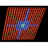 Wholesale Professional 150 watt Hydroponic led grow lights 670 ~ 700mA energy saving , Warm White from china suppliers