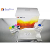 Wholesale Insulin / INS Human Sandwich Elisa Kit Under 2 - 8°C Storage Condition from china suppliers