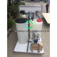 500g / H Active Chlorine Naclo Solution Make by Electrolysis From Salt Water