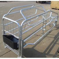 China hot dip galvanized pig farrowing crate pig cages for pig farming for sale