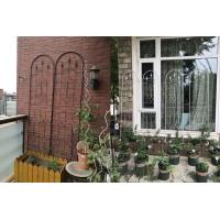 Wholesale Powder Coated Garden Plant Trellis Beautiful European Style Fit Outdoor Vine Plant from china suppliers