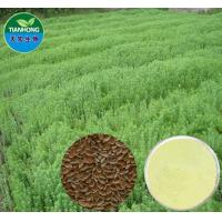 China Flax Seed Extract in Various Specification on sale