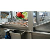 Wholesale Full Automatic Apple Processing Equipment , Fruit And Vegetable Washer Machine from china suppliers