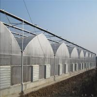 China Hydroponic Commercial Agriculture Greenhouse Wide Wide PE Plastic Film Greenhouse for Agriculture/tomato/garden/Farming for sale