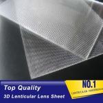 China PLASTIC LENTICULAR 30 LPI Lenticular Inkjet Prints Sheets Transparent PS 3D Motion Lenticular Photo Lens Materials for sale