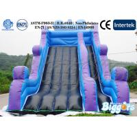 Wholesale 18oz PVC Outdoor Playgound Kids Inflatable Slide , Water-proof / Puncture-proof from china suppliers