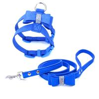China HP-055 Colorful Dog Collars And Leashes High Strength Small Size For Safety for sale