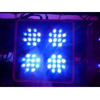 Wholesale Apollo-4 LED Coral Reef Aquarium Lights with 2 Switches and 2 Power Cords (Apollo4) from china suppliers
