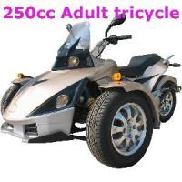 Wholesale 250CC Trike Motorcycle from china suppliers
