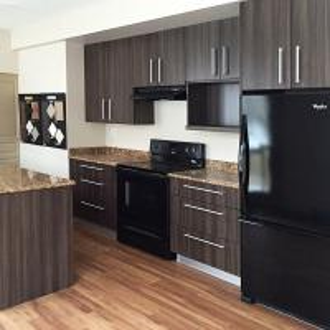 Villa / Hotel Solid Wood Kitchen Cabinets Silestone Benchtop With Kitchen Appliance