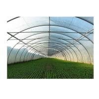 Wholesale Agricultural Greenhouse Steel Pipe High Tunnel Durable Maintenance Free from china suppliers