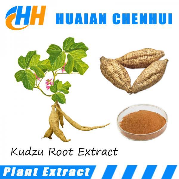 Kudzu Root Extract , Puerarin