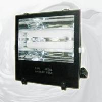 Wholesale Flood Light With Magnetic Induction Lamp (RZHL303) from china suppliers