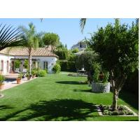Quality 12500Dtex 36mm PE Artificial Fake Turf Grass Lawn for sale