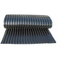 Wholesale HDPE 3D Geocomposite Drain , Composite Drainage Board Extrusion Machine from china suppliers