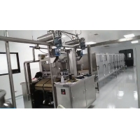 Wholesale SS304 300kg 150kg/H Soft Candy Gummy Bear Machine from china suppliers