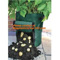 China potato planter with 7/10 gallon potato planter,potato grow pots with handles flap for easy havesting, and drainage holes on sale