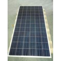 Best low cost 300 watt polycrystalline silicon solar panel wholesale