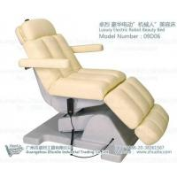 Professional Beauty Salon Facial Bed with CE