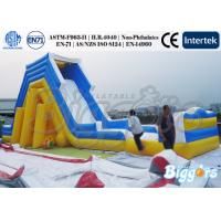 Wholesale Exciting  Kids Inflatable Water Slide Large Climbing Games Amusement Park from china suppliers