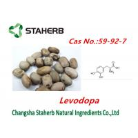China Concentrated plant Mucuna pruriens extract Levodopa powder cas no.59-92-7 on sale