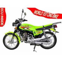Wholesale World 1st CNG Motorcycle Latest Edition from china suppliers