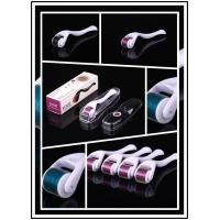 Wholesale Skin Care Titanium Micro Needle Derma Roller With 540 Needles from china suppliers