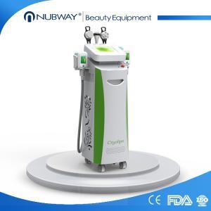 Professional 5 handpiece cryolipolysis fat freezing / cryolipolysis slimming machine