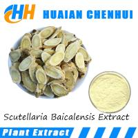 Wholesale Scutellaria Baicalensis Extract Functional food additive 98% Baicalein 80%-85% Baicalin powder from china suppliers