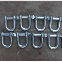 Quality Marine shackles steel shackles stainless steel shackles Hot Dip Galvanized for sale
