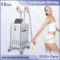 China Fat Freezing Cryolipolysis Slimming Machine With Two Handles and Touch screen on sale