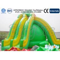 Wholesale Ausement Park Kids Inflatable Water SlideTurtle with Climbing Ladder from china suppliers