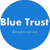 China Blue Trust Business Service -- Hong Kong Company Agent Accounting and Audit Declaration on sale