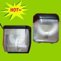 Wholesale Induction Light With Ceiling Light (RZHL604) from china suppliers