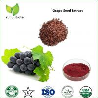 Wholesale grape seed extract polyphenols,grape seed extract 95%,grape seeds extract proanthocyanidin from china suppliers