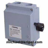 China Plastic Enclosed Side-Operated Disconnector Switch for sale
