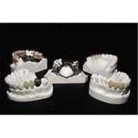 China Superior bio compatibility Dental Zirconia Crowns With CAD / CAM For Muti Unit Crown on sale