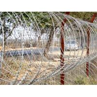 Wholesale Galvanized / Stainless Steel Razor Wire from china suppliers