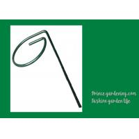 Wholesale Metal Garden Green Plant Supports from china suppliers